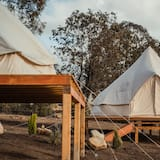 Glamping King Size Bed in Valle de Guadalupe