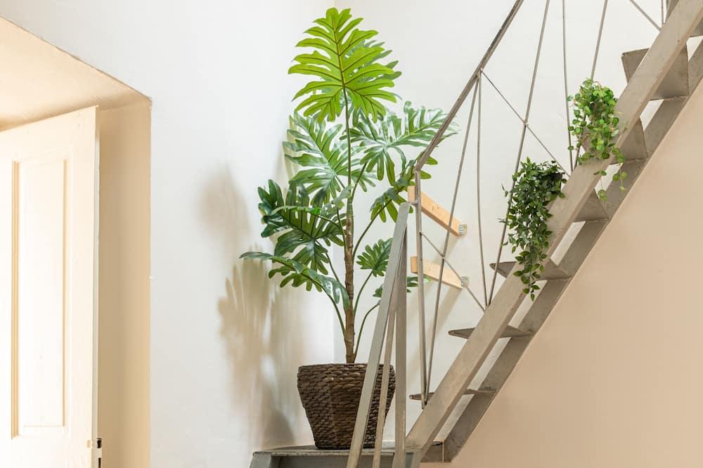 Apartmán typu Basic - Vybraná fotografia