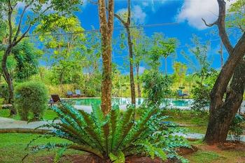 Gambar Pelwehera Village Resort di Dambulla