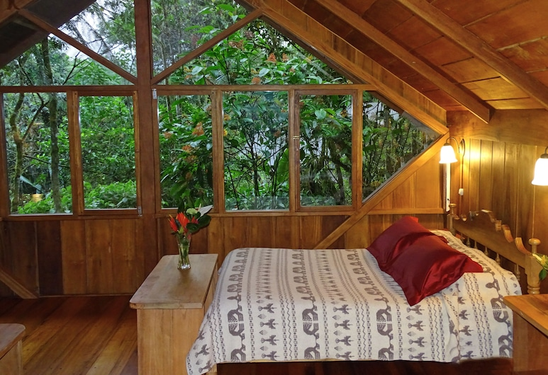 Casa Divina Lodge, Mindo, Superior Double or Twin Room, View from room