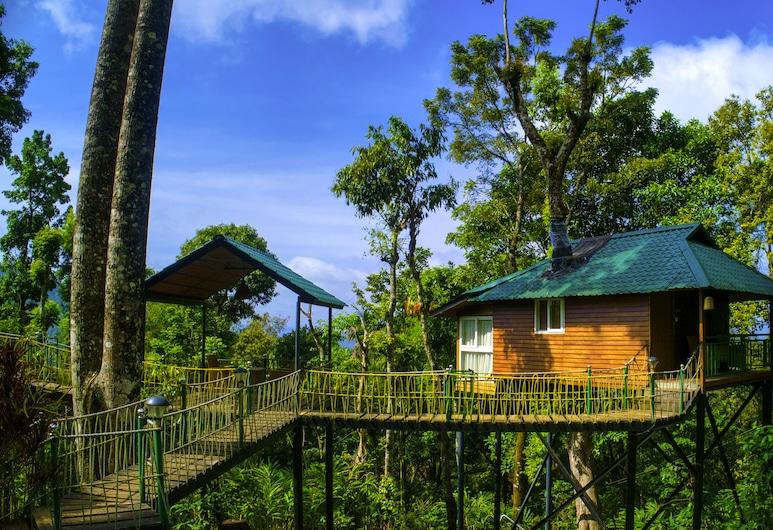 Kaivalayam Retreat, Devikolam, Standard Tree House, 1 Bedroom, Bathtub, Hill View, Pemandangan Laman Dalam