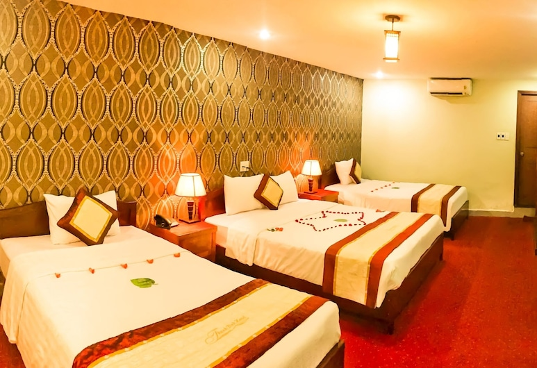 Thanh Binh Trade Union Hotel, Da Nang, Deluxe Room, Bilik Tamu