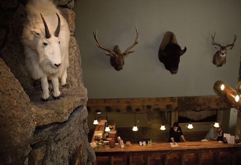 Three Bear Lodge, West Yellowstone, Lobby