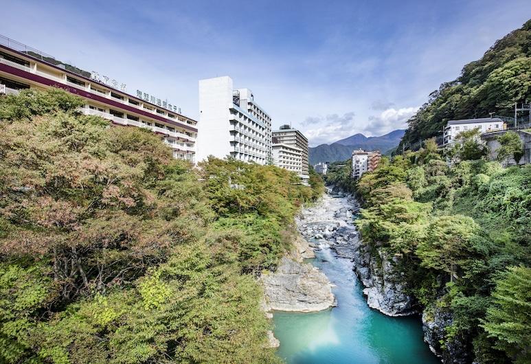 Kinugawa Onsen Hotel, Nikas