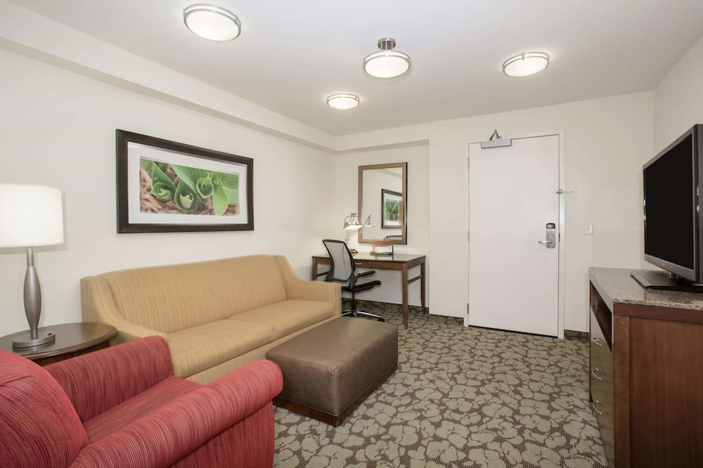 Standard Room, 1 King Bed with Sofa bed, Accessible - Living Area