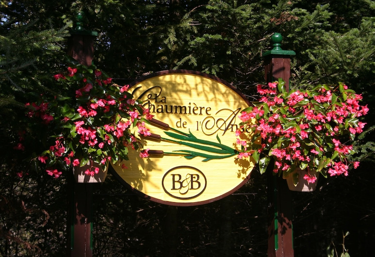 夏米爾德蘭斯飯店, 特姆布朗特山, 住宿範圍