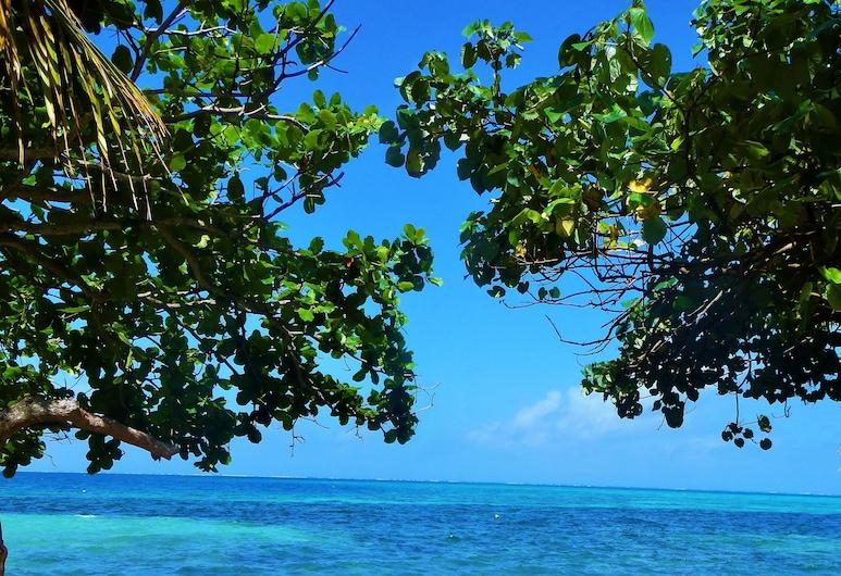 Mai Dive Astrolabe Reef Resort, Pulau Ono, Tempat Makan Luar