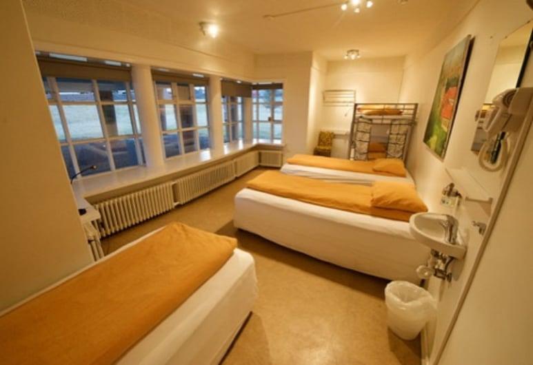 Hostel B47, Reykjavik, Family Room (towels not included), Bilik Tamu