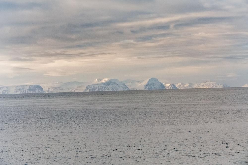 Double with ocean view or deluxe - Plaj/Okyanus Manzarası