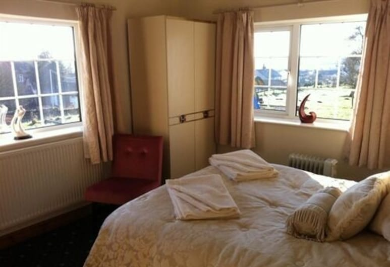 The Coach & Horses Inn, Newport, Double Room, Ensuite, Guest Room