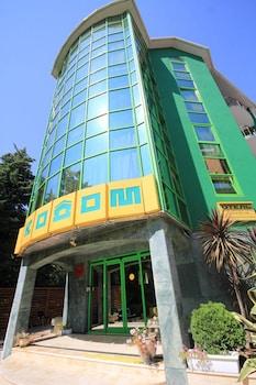 Picture of Ecodom Sochi Hotel in Sochi