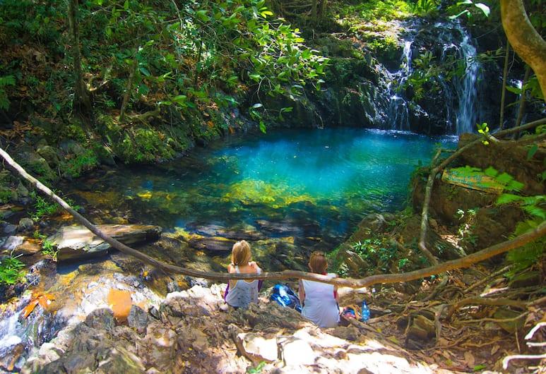 Bocawina Rainforest Resort & Adventures, Hopkins, Pool Waterfall