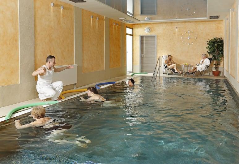 Hotel Smetana-Vyšehrad, Karlsbad, Pool
