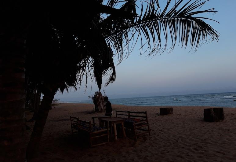 ذا بيتش هاوس, إلمينا, الشاطئ