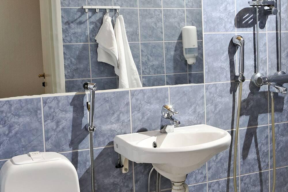 Ekonominės klasės dvivietis kambarys (2 viengulės lovos) - Vonios kambarys