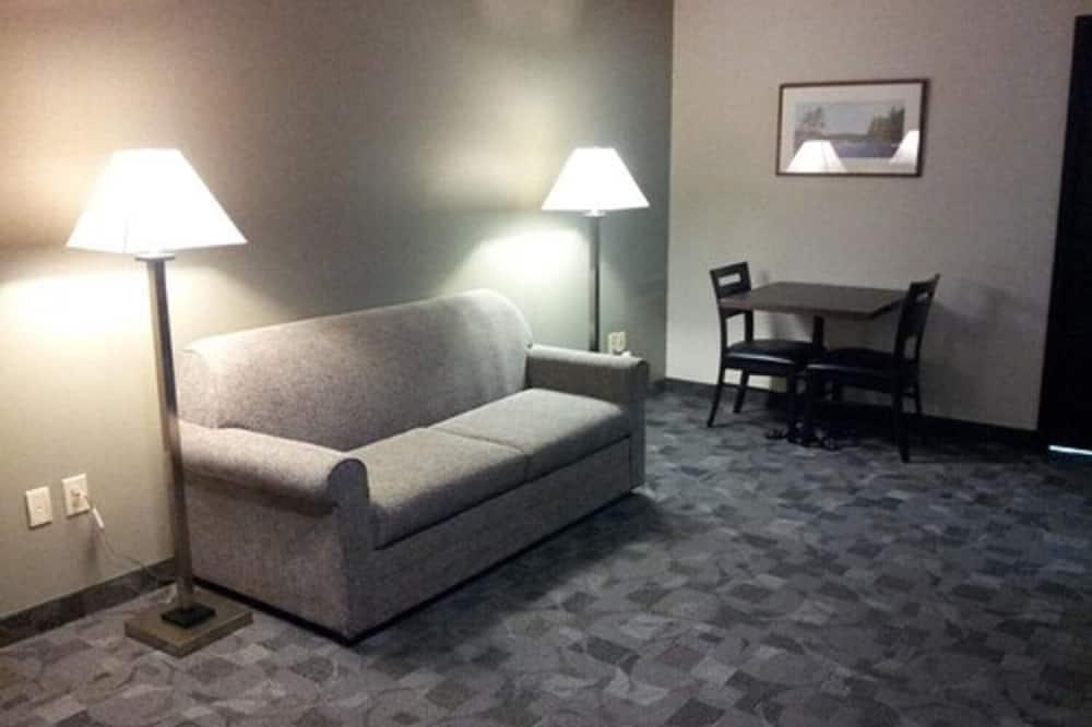 Darījumklases luksusa numurs - Dzīvojamā istaba