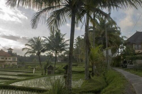 Book Bali Suksma Villa In Ubud Hotels Com