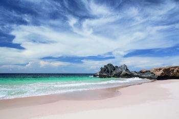 Φωτογραφία του The Ritz-Carlton, Aruba, Noord