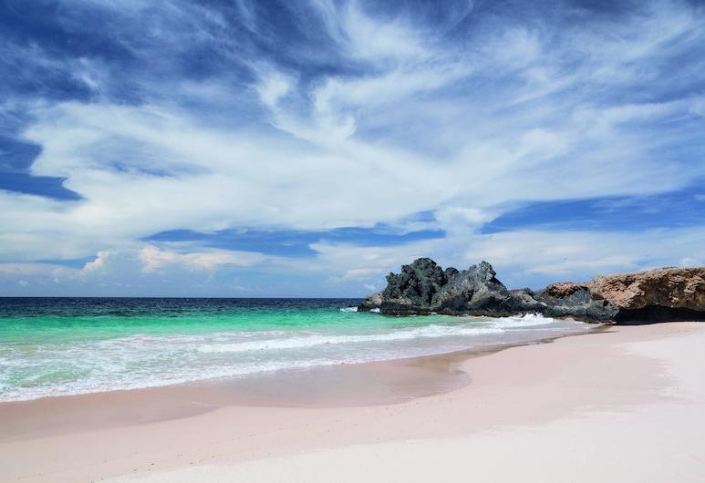 The Ritz-Carlton, Aruba, נורד, חוף ים