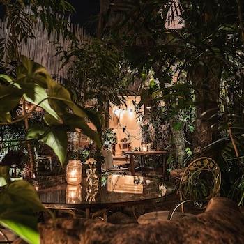 Playa del Carmen bölgesindeki Hotel La Semilla resmi