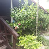 Standard-Einzelzimmer - Blick auf den Garten
