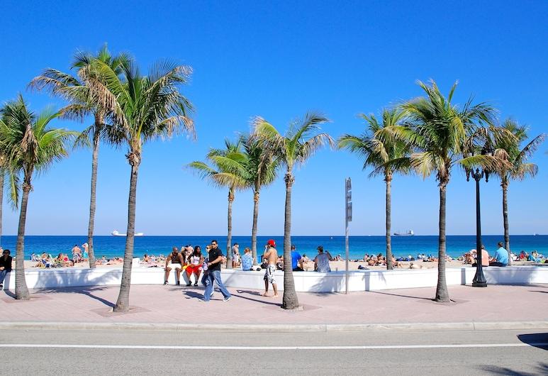 Fala Hotel, Fort Lauderdale, Utsikt från hotellet