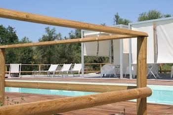 安科納A3Passi Agriturismo tra gli Ulivi 酒店的圖片