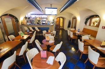 תמונה של Hotel Modrá Růže בפראג