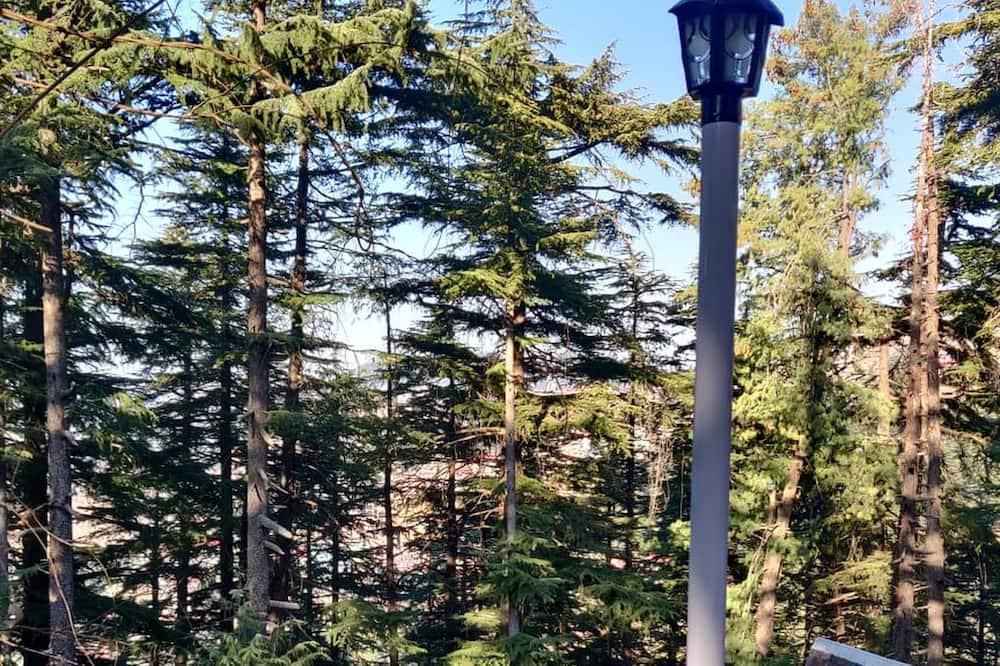 Shimla British Resort