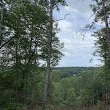 Cabin (Sweet Creek Retreat) - Property Grounds