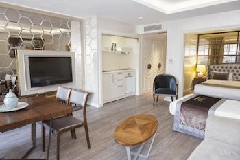 İstanbul bölgesindeki Suiteness Taksim Hotel resmi