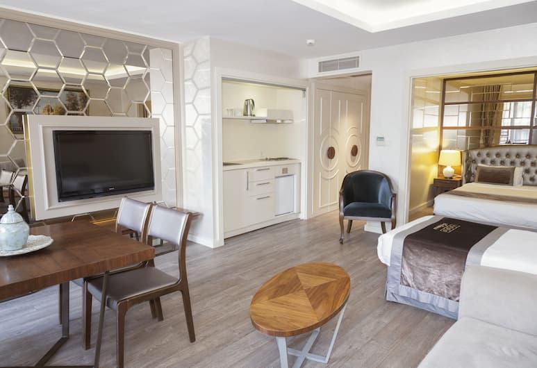 Suiteness Taksim Hotel, Κωνσταντινούπολη, Comfort Σουίτα, Θέα δωματίου