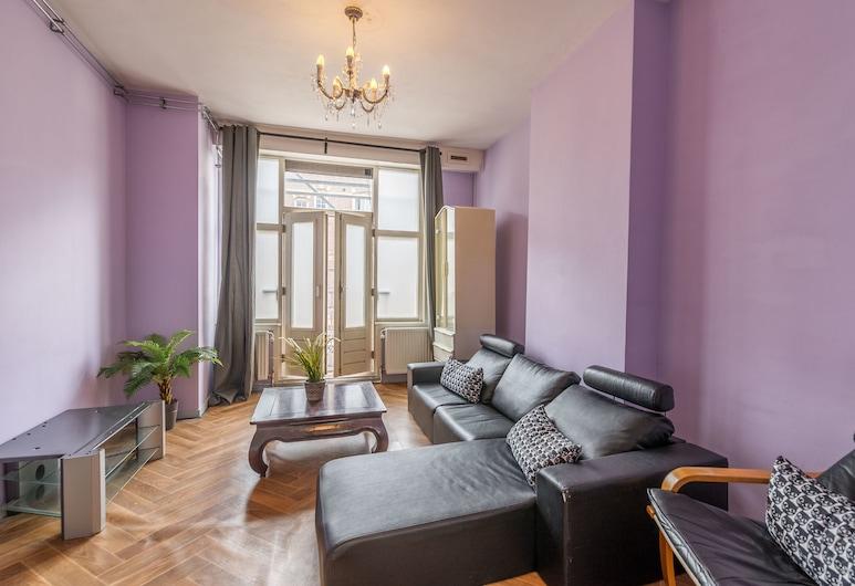 Park Palace Apartment, Amsterdam, Classic-lejlighed - 1 soveværelse - byudsigt, Opholdsområde