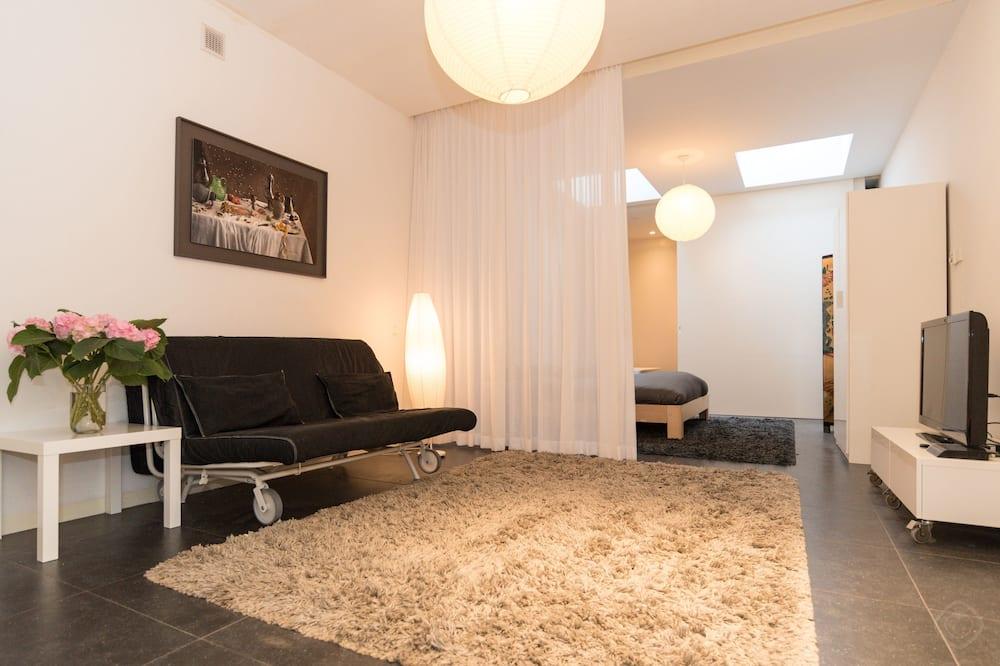 สตูดิโอ, เตียงใหญ่ 1 เตียง และโซฟาเบด, วิวเมือง (Koestraat) - ห้องนั่งเล่น
