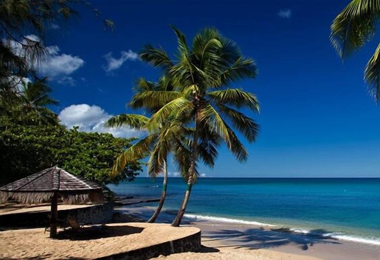 East Winds Saint Lucia - All Inclusive, Gros Islet, Ranta