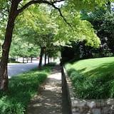 거리 전망
