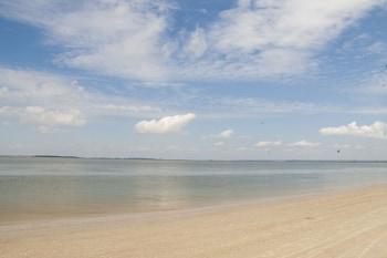 Hình ảnh DeSoto Beach Gardens tại Tybee Island