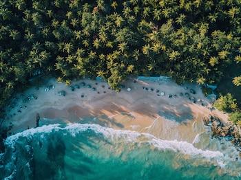 Slika: Palm Paradise Cabanas & Villas Beach Resort Tangalle ‒ Tangalle