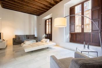 Granada bölgesindeki Elvira Suites Apartamentos resmi