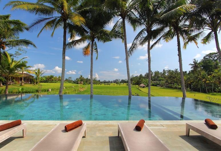 馬錫斯渡假飯店, 烏布, 游泳池