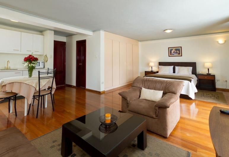 Suites Metropoli, กีโต, ห้องสวีท, พื้นที่นั่งเล่น
