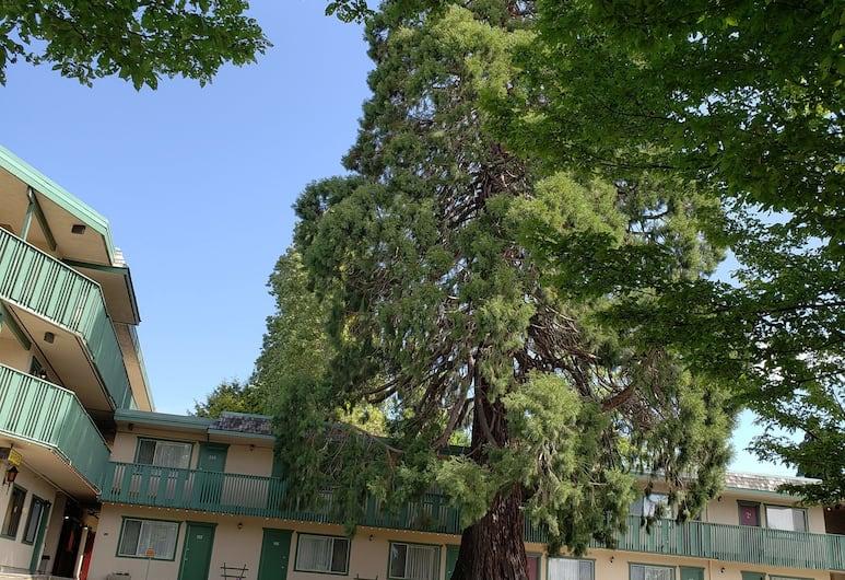 Robin Hood Inn & Suites, Victoria, Dış Mekân