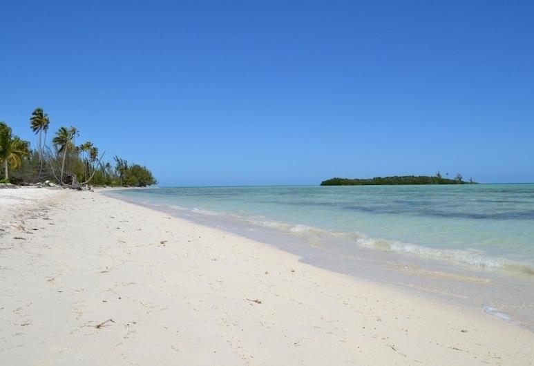 Swains Cay Lodge, Mangrove Cay, Strand