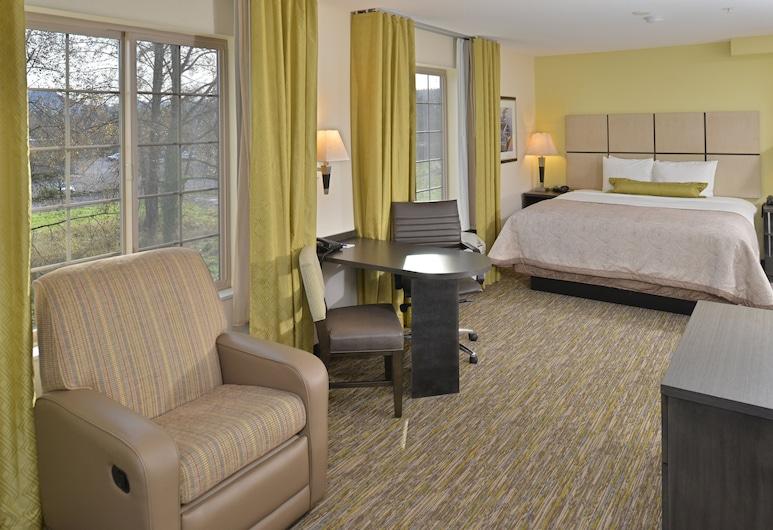Candlewood Suites Eugene Springfield, Eugene, Studiové apartmá, dvojlůžko (200 cm), výhled, Pokoj