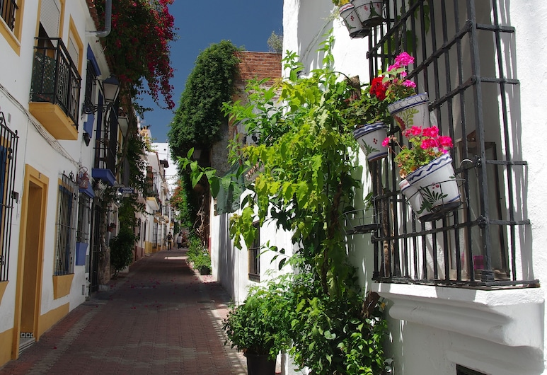 Pension Aduar, Marbella, Hotellentré