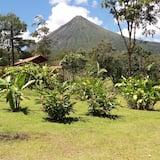 Tropical Villa with Jacuzzi - منظر للجبل