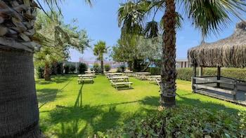 Picture of Hotel Titan Garden in Alanya
