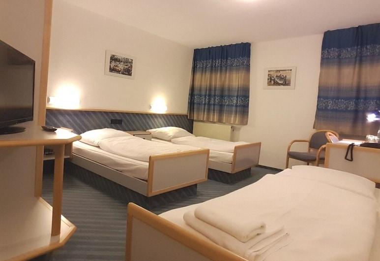 Löwen Hotel Arian, Альмерсбах-им-Таль, Стандартный трехместный номер, отдельная ванная комната, Номер