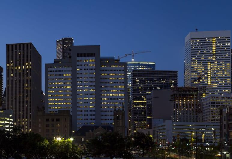 Holiday Inn Houston Downtown, יוסטון, אזור חיצוני