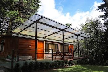 Picture of Los Pinos Cabanas y Jardines in Monteverde